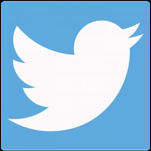 twitter-bird-1366218_960_720