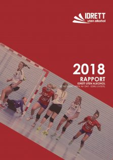 Rapport for 2018